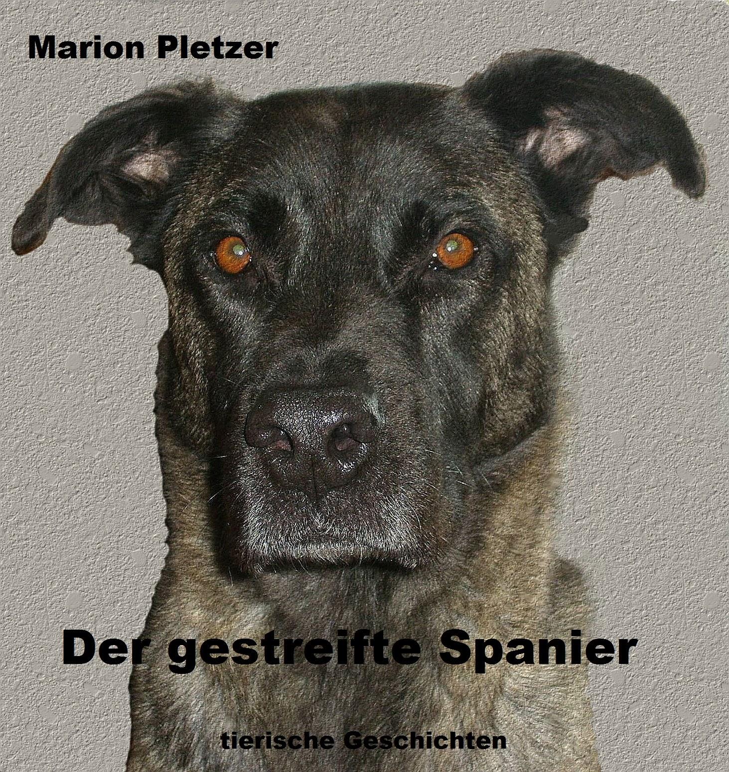 http://www.amazon.de/gestreifte-Spanier-Marion-Pletzer-ebook/dp/B004YTT23O/ref=sr_1_1?ie=UTF8&qid=1389472369&sr=8-1&keywords=der+gestreifte+spanier