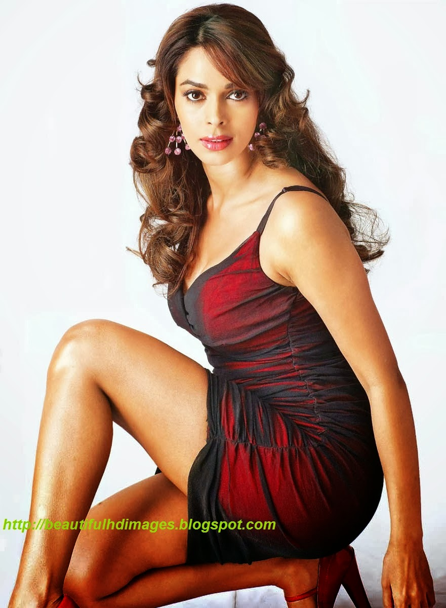 wallpapers mallika sherawat bikini - photo #13