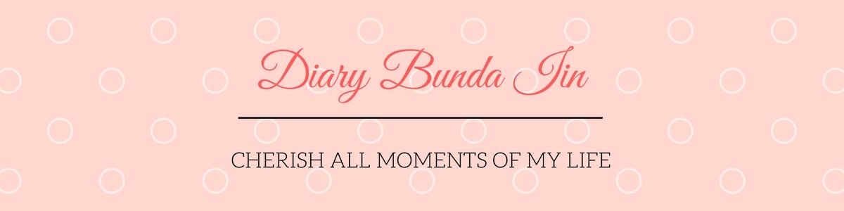 Diary Bunda Iin