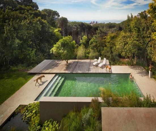 Safari Fusion blog   African green   Stunning residence in Cape Town by Antonio Zaninovic Architecture Studio