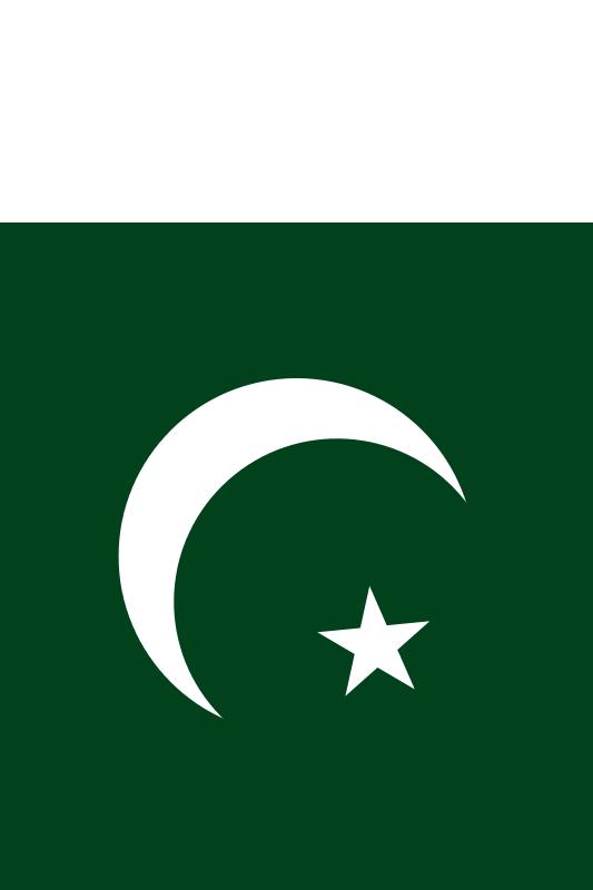 bandera de Paquistan para imprimir