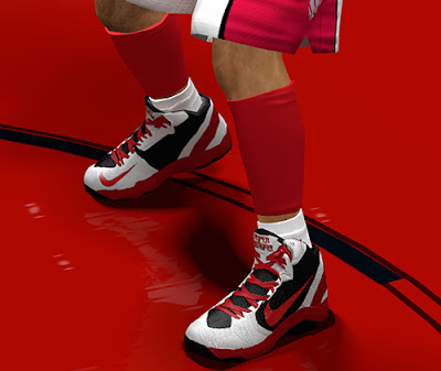 NBA 2K13 Nike Zoom Hyperdisruptor Shoes Patch