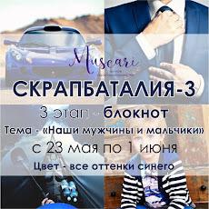 III этап СКРАПБАТАЛИИ-3