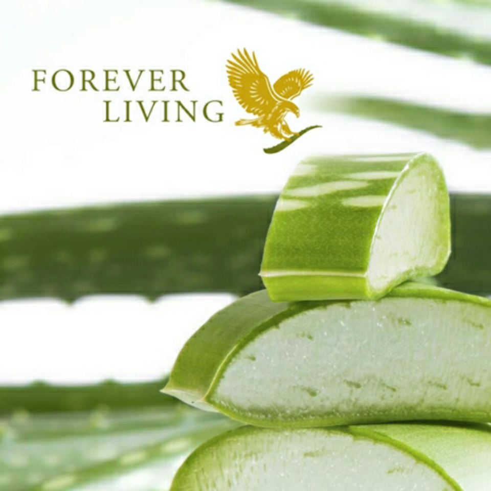 jom sehat dengan #ForeverLiving