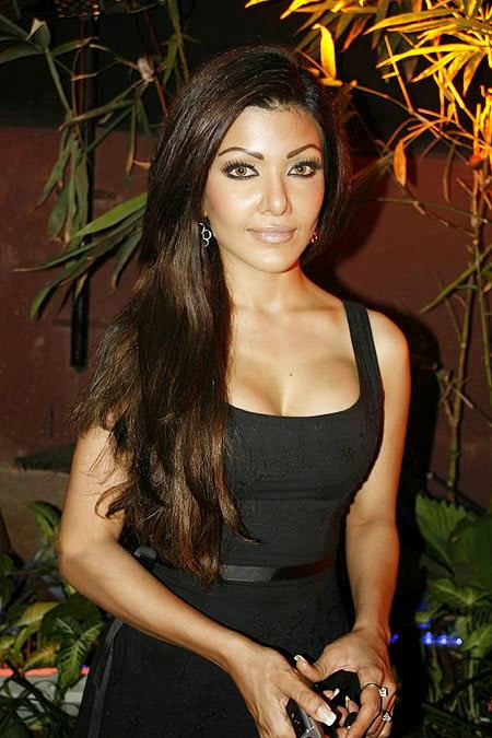 Koena Mitra :Koena Mitra Hottest HD Photos sexy Upskirt pics looks very hot in Black Mini Skirt HD Photos