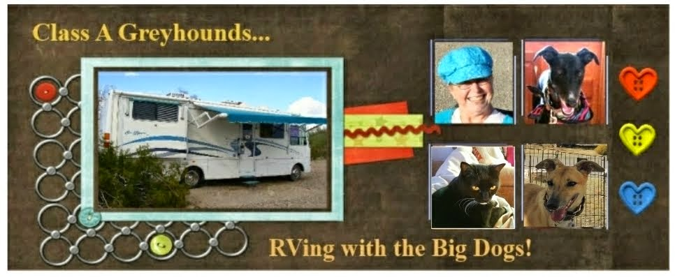Class A Greyhounds...RVing with the big dogs!