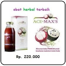 obat untuk penyakit radng paru paru secara herbal