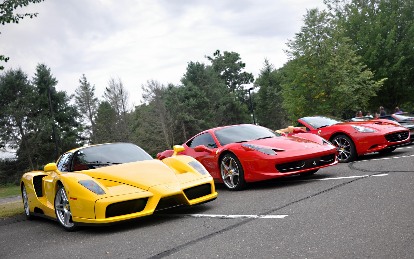 http://4.bp.blogspot.com/-Jfju6Ge_imk/TvhLYxorb5I/AAAAAAAACwM/J6UHlI3SkH0/s1600/Ferrari+Enzo+wallpaper+%2528thewallpaperdb.blogspot.com%2529+%25285%2529.jpg