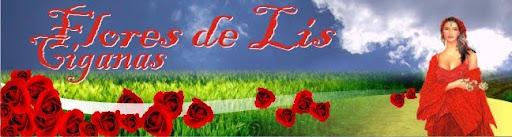 Flores de Lis Ciganas