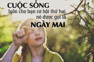 cham ngon y nghia ve cuoc song