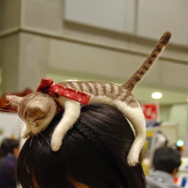 Как сделать на голову кота