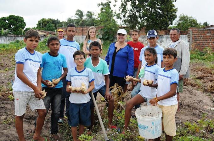 São José de Mipibu: Alunos de escola estadual aprendem com produção em horta didática