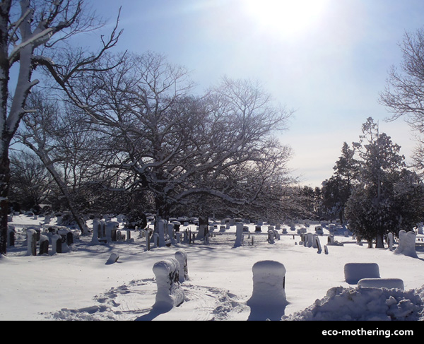 Snowy Cemetery