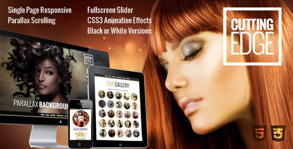 Download Cutting Edge - Spa Hair Salon WooCommerce WP Theme