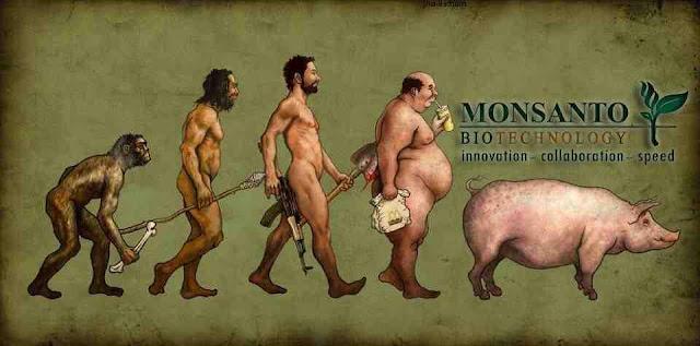 Μεγάλη νίκη των ευρωπαίων κατά της Monsanto