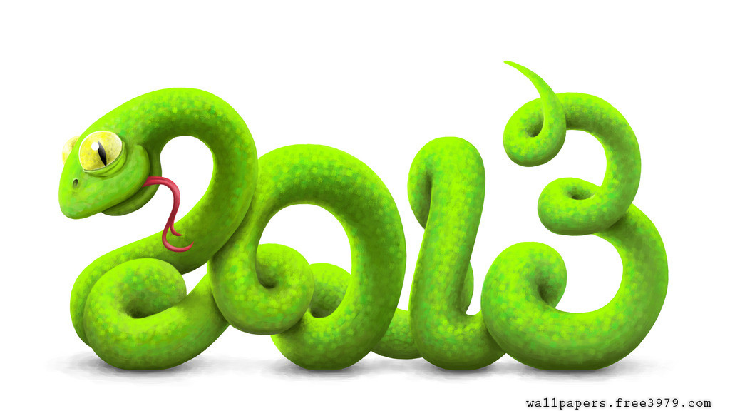 2013 3d Snake New Year