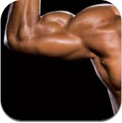 All You Need to Know About Muscle Building