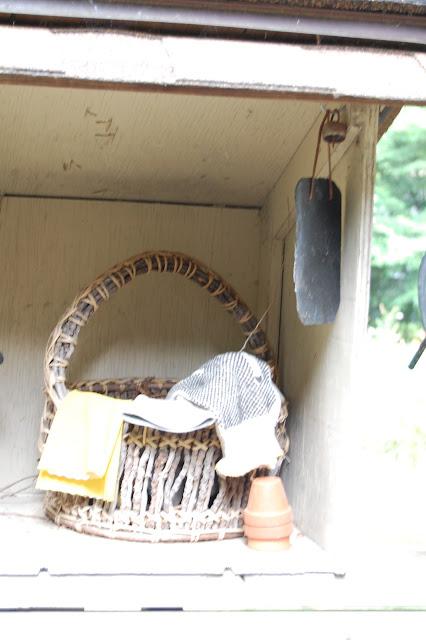 nesting wrens