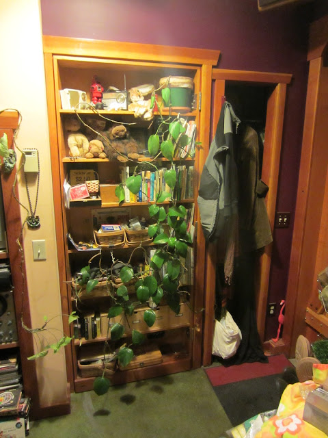A secret door in a small seattle house for Houses with secret rooms and passageways
