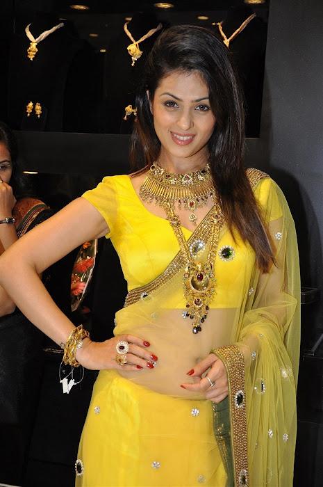 Anjana Sukhani in saree wallpapers