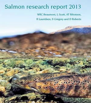 salmon research paper Information literacy 101 - the basics of using the salmon library  present the  specific research hypothesis, purpose of the research, or questions  because  the review is more personal than a research paper on the topic.