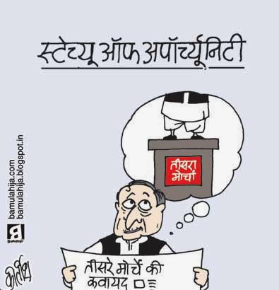 third front, mulayam singh cartoon, statue of unity, election 2014 cartoons, cartoons on politics, indian political cartoon