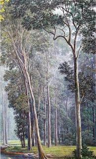 Paisajes Naturalistas De La Jungla