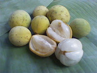 Health - Benefits Duku Fruit for Health | Daily Health ...
