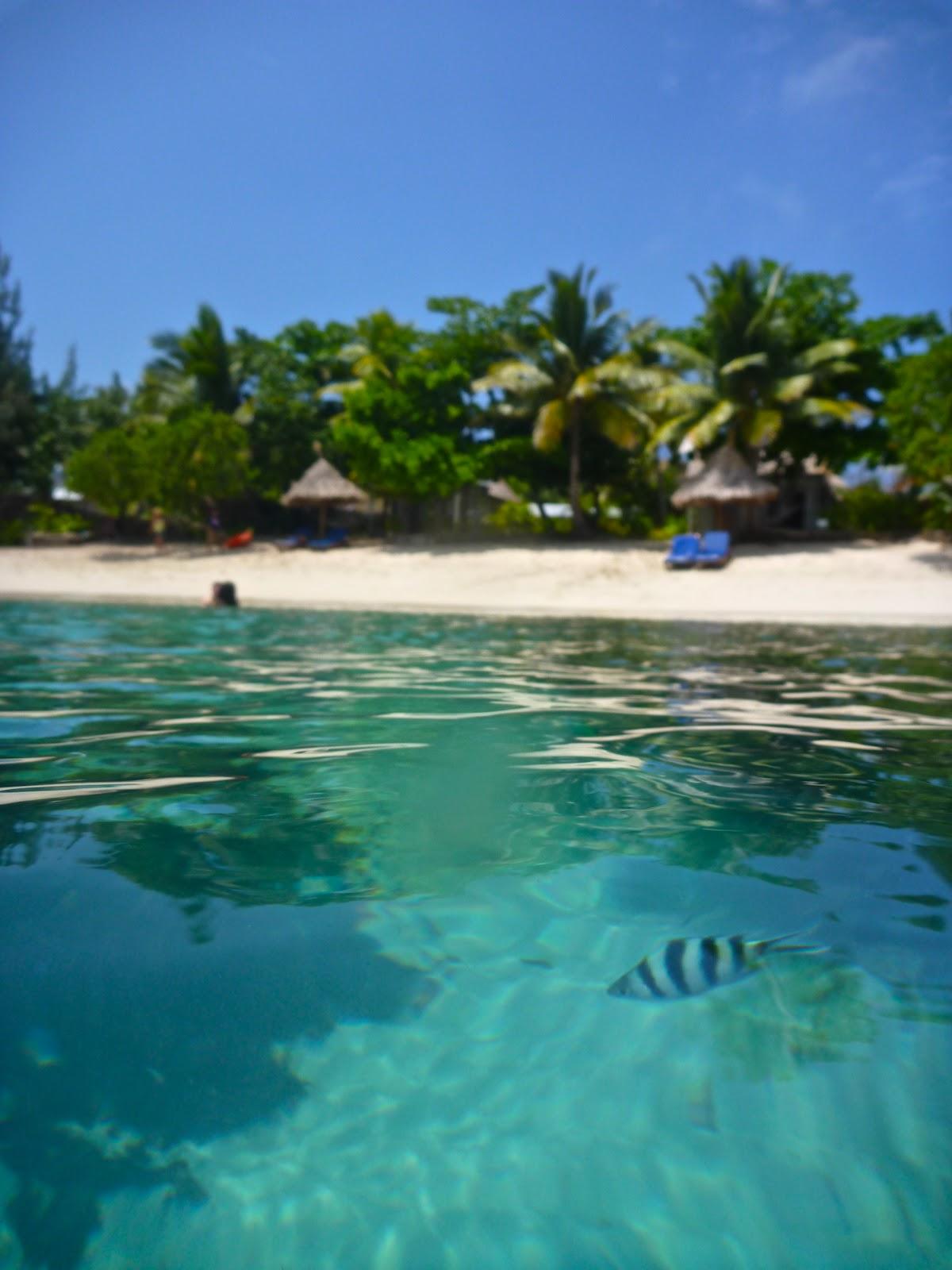 away from the burrow blue lagoon nacula island fiji. Black Bedroom Furniture Sets. Home Design Ideas