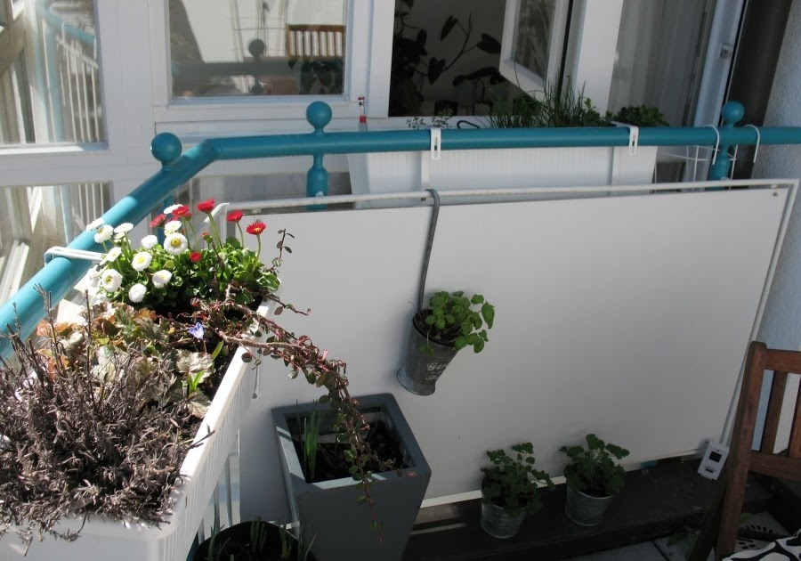 balkon fr hlingsfit machen balkonrosen. Black Bedroom Furniture Sets. Home Design Ideas