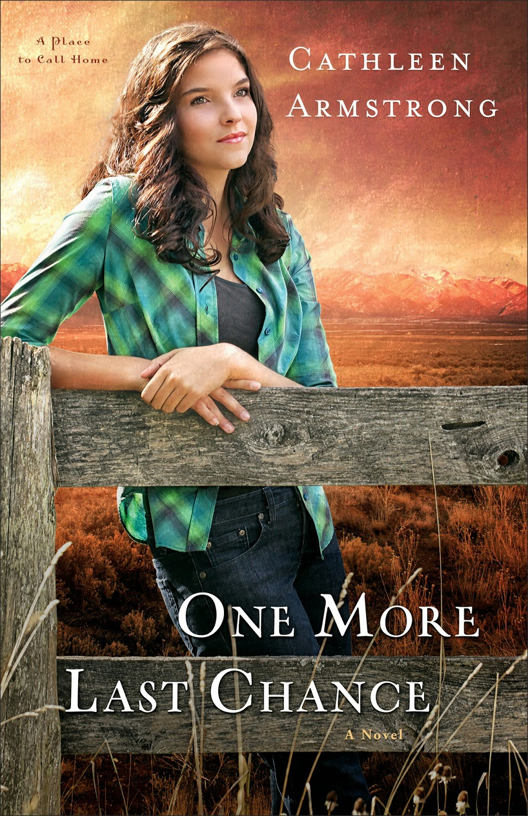 One More Last Chance cover image