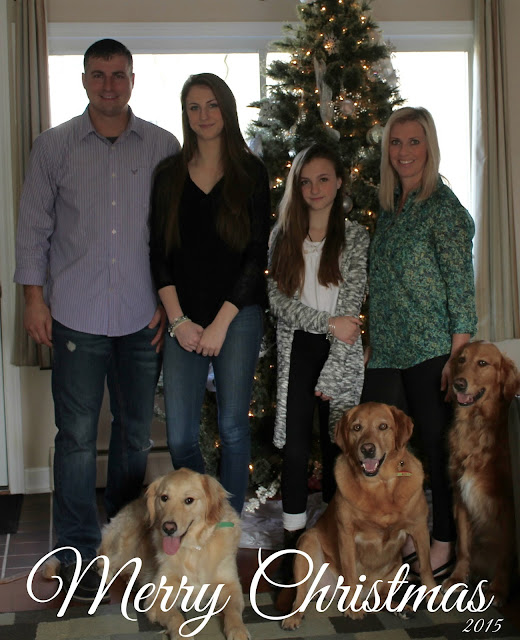 Golden Retriever dog family merry Christmas 2015