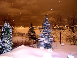 Snow during night Photo by Bogdan Fiedur