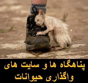 فهرست برخی از پناهگاه ها و سایت های واگذاری حیوانات در ایران