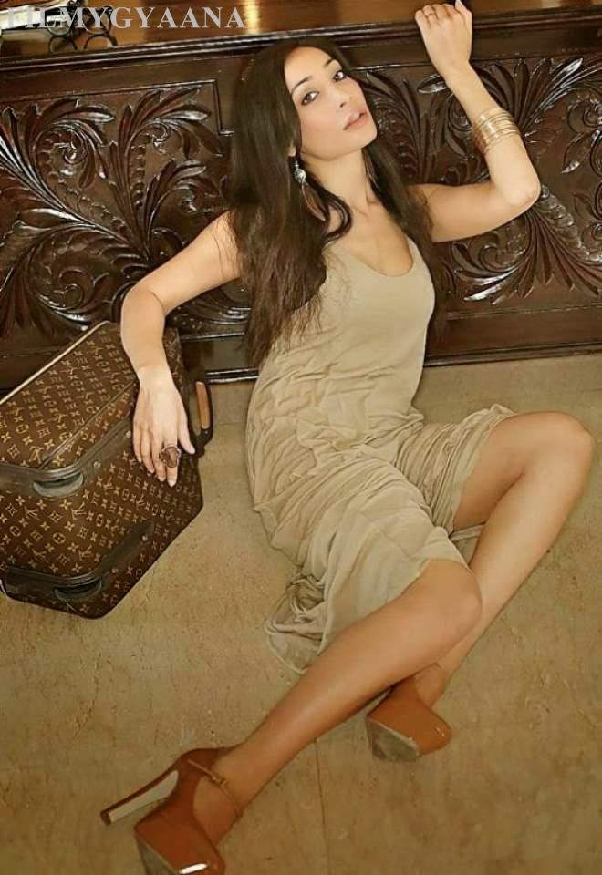 sofia hayat spicy legs photos