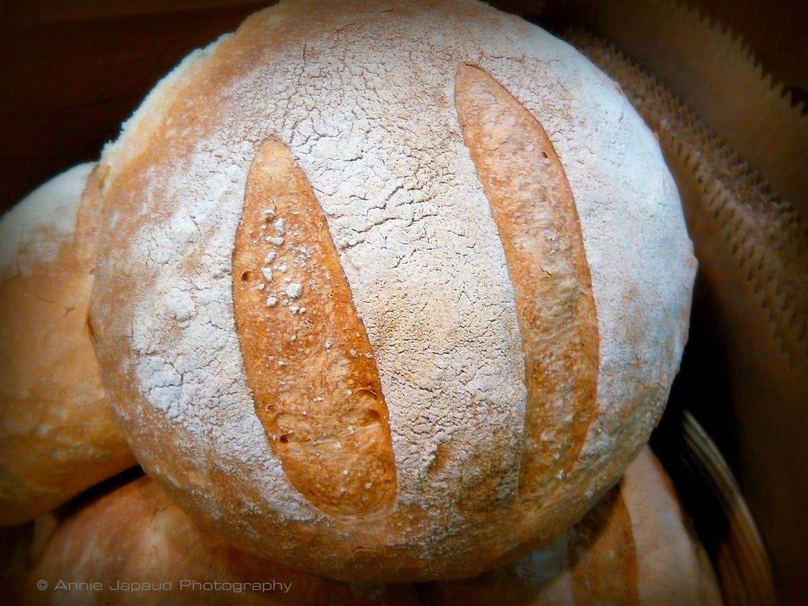 image of a sourdough bread