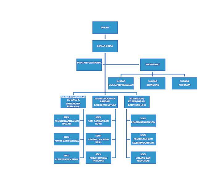 Bagan Struktur Organisasi Dinas Pertanian Kabupaten Asahan)