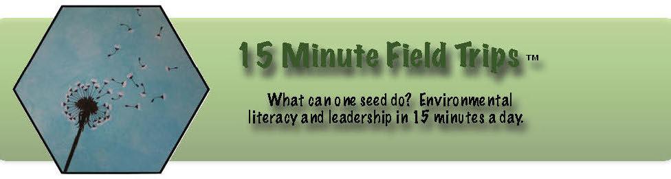 15 Minute Field Trips