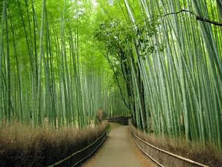 buluh,tempat pelancongan