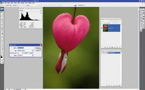 Thiết lập Photoshop Action xử lý ảnh hàng loạt 2