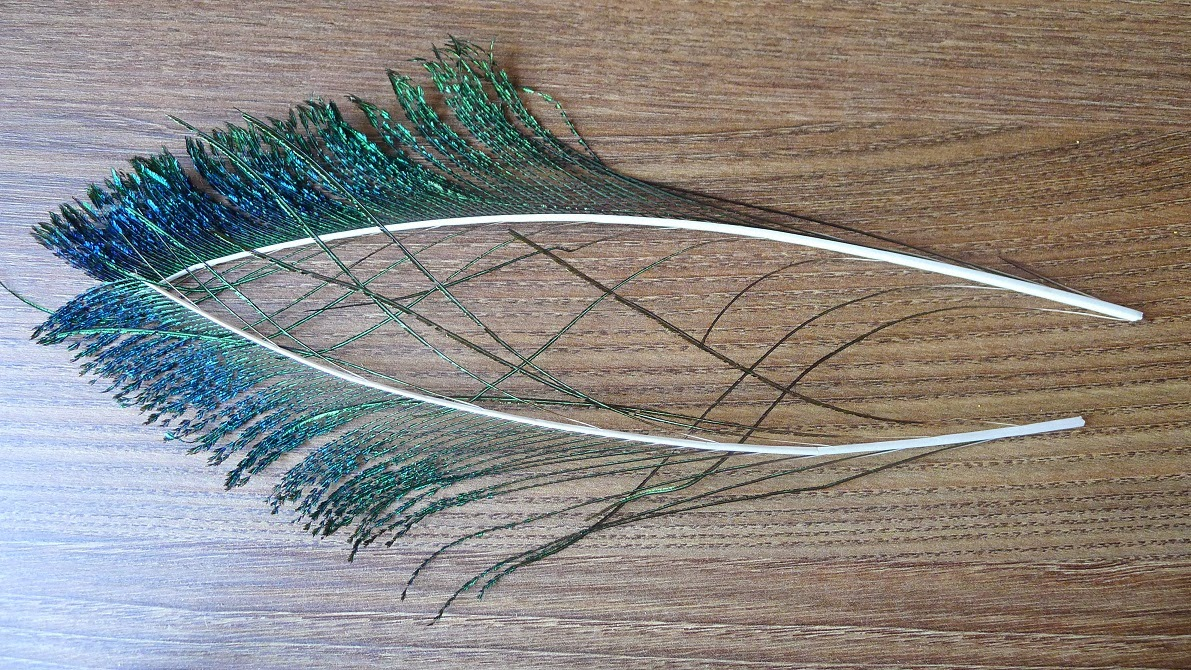 Fly fishing chronicles wet fly tying feathers part 2 for Fly fishing feathers