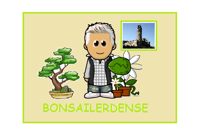 BONSAILERDENSE