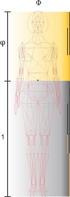 Divina Proporción,Pentagonometria