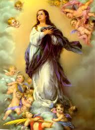 Paroquia Imaculada Conceição