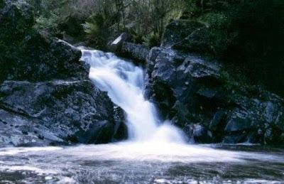 Significados de Sonhar com Água