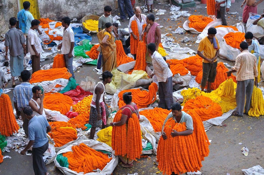 Image result for mallick ghat flower market kolkata