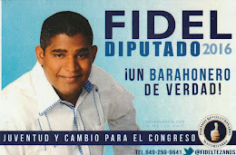 Fidel diputado