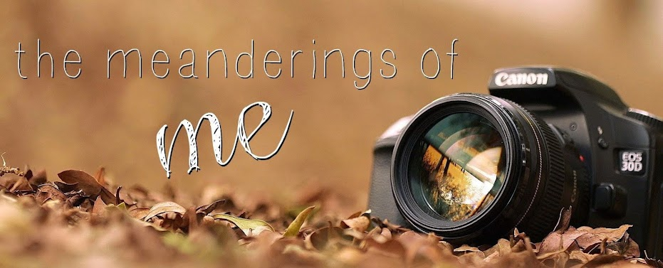 The Meanderings of Me