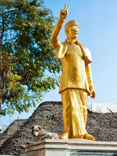 собака забралась на постамент статуи