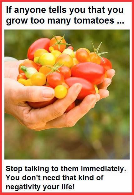Tomato Maniac